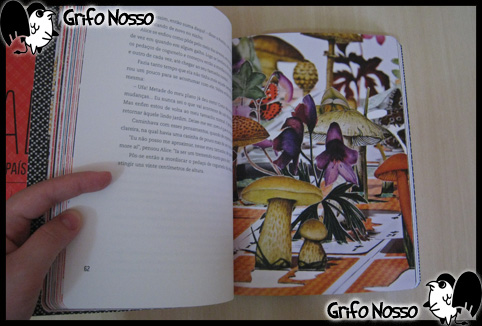 """Formatação das páginas do livro """"Alice no país das maravilhas - Edição Especial"""""""